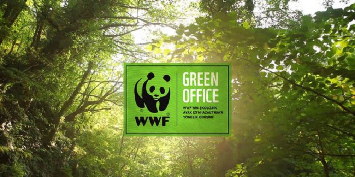 Yeşil Ofis Olabilmek İçin Uygulayacağınız 10 İpucu
